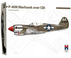 1:48 Curtiss P-40  N WARHAWK over CBI - Hobby2000 48002